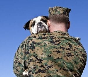 Military Man Hugs Dog